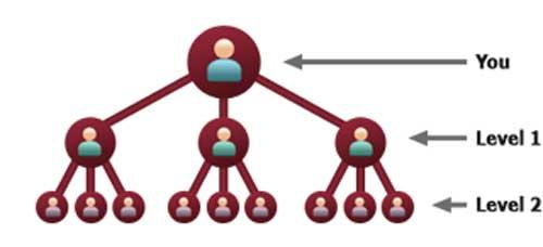 bizoppers-3x10-matrix-compensation-plan