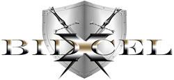 bidxcel-logo
