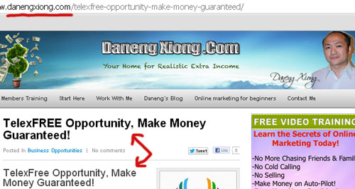 danen-xiong-blog-telexfree-guaranteed-income