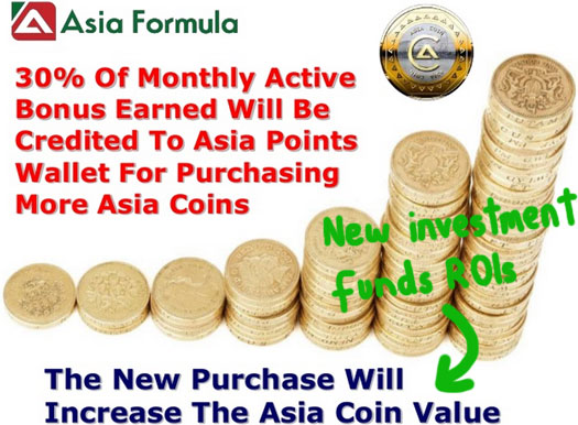 ponzi-points-ROIs-asia-formula-presentation