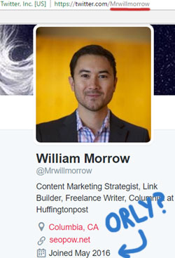 bogus-william-morrow-twitter-profile-onecoin